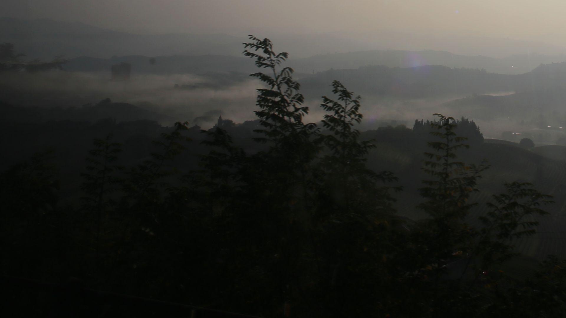 Piemonte Nebbiolo dimma
