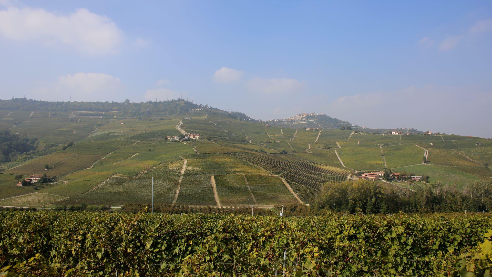 Piemonte La Morra